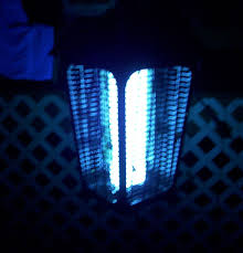 bed bugs uv light killing bug zappers how do they work are they effective at killing insects