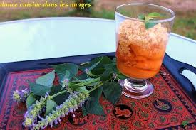 agastache cuisine abricots au sirop parfumé à l agastache et crumble douce cuisine