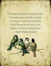 174 best ralph waldo emerson images on emerson quotes