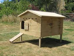 House Blueprints For Sale by Simple Chicken House Designs With Basic Chicken Coop Blueprints