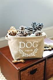 the best diy ideas for your dog