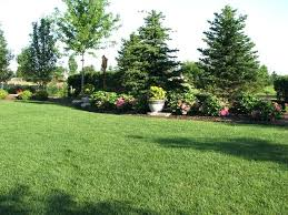 Privacy Backyard Ideas Landscaping For Privacy Landscaping Privacy Ideas Flyingangels Club