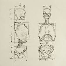 Human Anatomy Reference Best 25 Drawing Reference Ideas On Pinterest Art Reference