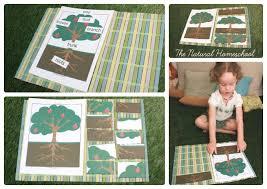 montessori tree printable montessori inspired botany parts of a plant parts of a tree free