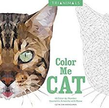 color number coloring books adults stress free colouring