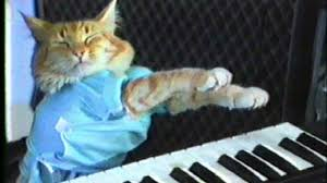 Keyboard Cat Meme - nyan cat and keyboard cat form unholy feline alliance techradar