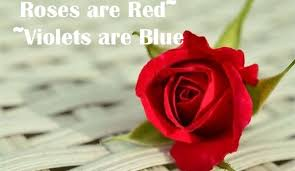 Roses Are Red Violets Are Blue Meme - roses are red violets are blue meme funny jokes poems collection