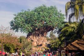 a former disney imagineer s guide to disney s animal kingdom