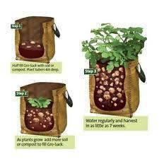 Ebay Vertical Garden - potato planter outdoor vertical garden wall hanging open style