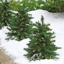 decorations for lighted outdoor christmas trees