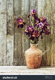 Vase With Irises Purple Iris Flowers Rustic Vase On Stock Photo 79149169 Shutterstock