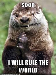 Gopher Meme - i can has cheezburger rule the world funny internet cats cat