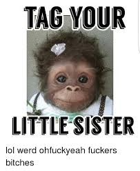 Little Sister Meme - tag your little sister lol werd ohfuckyeah fuckers bitches lol
