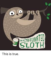 Sloth Meme Images - sloth meme funny sloth images and dirty sloth memes