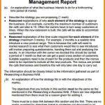 Monthly It Report Template For Management by 7 Management Report Template Incident Report