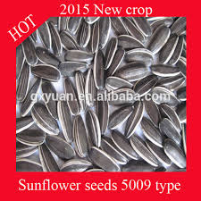 sunflower seeds price sunflower seeds price suppliers and