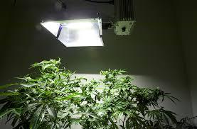 Grow Room Lights Electric Sunshine Part 2 Lamps For Marijuana Grow High Times