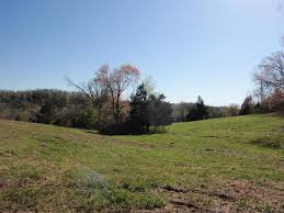 homes for sale 0 old mill creek rd lyles tn 37098