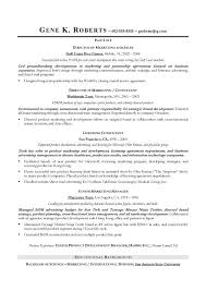 Ceo Resume Sample Doc by Resume Resume Example Uts Cio Resume Example Sample Resumes Cv