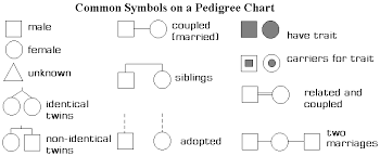 Pedigree Chart For Color Blindness Reading Pedigrees