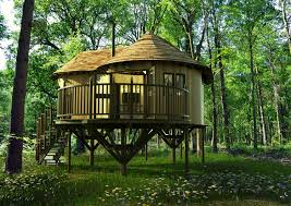 best tree houses photo collection love tree house forest