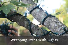 restring christmas tree lights how many lights for trees