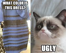 Ugly Cat Meme - the dress xanderated random stuff pinterest grumpy cat