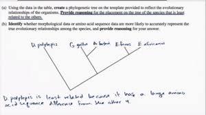 phylogenetic trees article khan academy