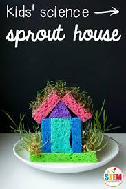 what an awesome spring science project for kids make a diy sprout