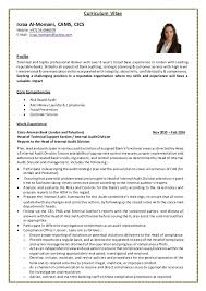 auditor resume exles buy an essay cheap order essay here bank audit