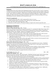 Example Sales Resumes by Resume Sales Director Resume