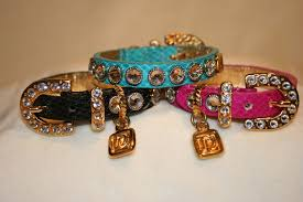 luxe fashion collars for dogs beverly magazine