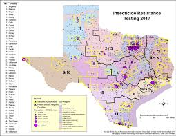 Angelo State University Map by Tiehh Researcher Studying Zika Transmitting Mosquitoes U0027 Resistance