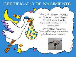 formato de acta de nacimiento en blanco gratis ensayos certificado de nacimiento para animales