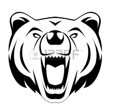 silhouettes bears white background royalty free cliparts