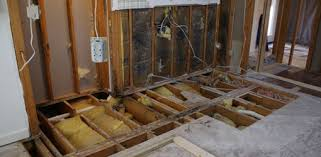 Bathroom Renovation Pictures Master Bathroom Renovation Part 1 Today U0027s Homeowner