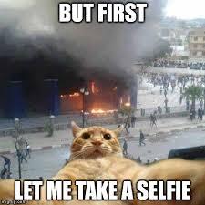 Meme Selfie - selfie cat meme generator imgflip