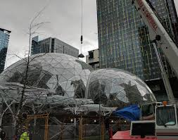 amazon u0027s biospheres spring to life with first planting in seattle