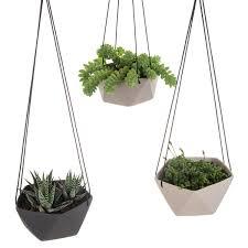 hanging planters geo succulents hanging planter lulu u0026 angel