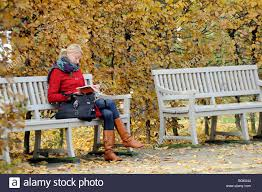 bench berlin woman reading book on park bench in autumn berlin germany stock