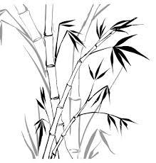 bamboo vector artwork pinterest illustrators artwork and