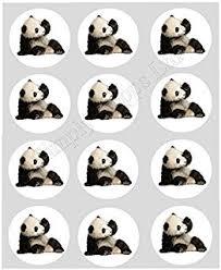 gorgeous panda personalised birthday card amazon co uk office