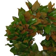shaped wreath by martha stewart trendy tree