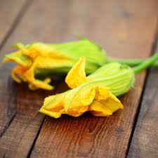 comment cuisiner les fleurs de courgettes fleurs de courgettes
