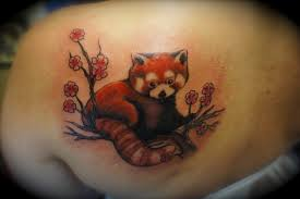17 baby bear tattoo designs cartoon tattoos quot funny