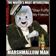 Stay Puft Marshmallow Man Meme - do not cross the memes the most interesting man in the world