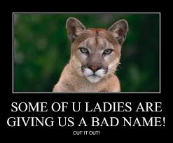 Cat Meme Ladies - lolcats cougar lol at funny cat memes funny cat pictures with