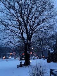 light with warm white led lights hang light balls