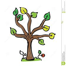 cartoon drawing tree with color royalty free stock image image