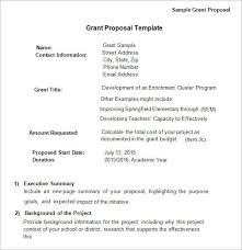 grant proposal letter grant proposal template word grant proposal